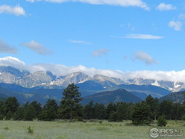 885 Elk Trail Ct, Estes Park, CO 80517 (MLS #768896) :: 8z Real Estate