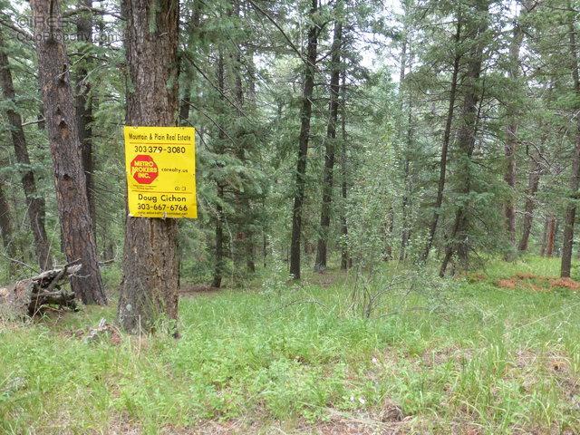 33855 Columbine Cir, Evergreen, CO 80439 (MLS #796800) :: 8z Real Estate