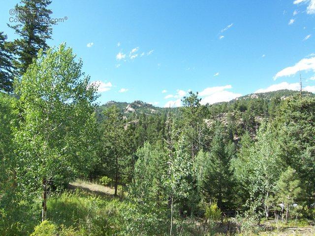 788 Lakeshore Dr, Boulder, CO 80302 (MLS #797392) :: 8z Real Estate