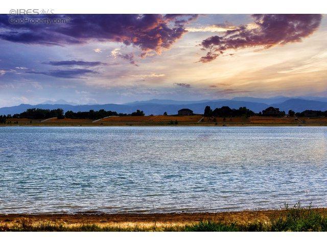 6411 Cottonwood Shores Dr, Wellington, CO 80549 (MLS #798482) :: 8z Real Estate