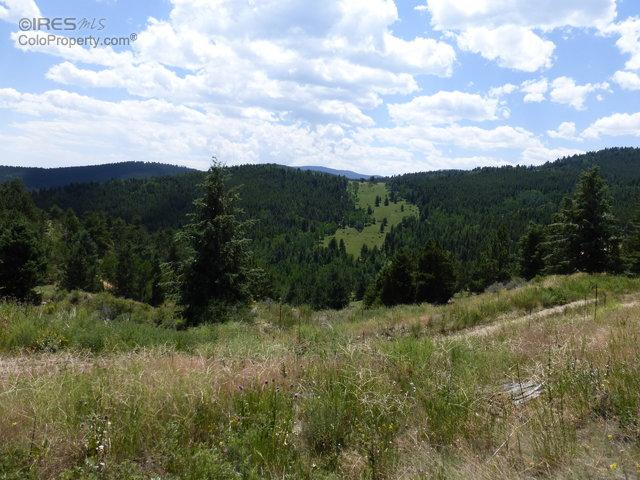 800 Missouri Flats Rd, Central City, CO 80427 (MLS #798920) :: 8z Real Estate