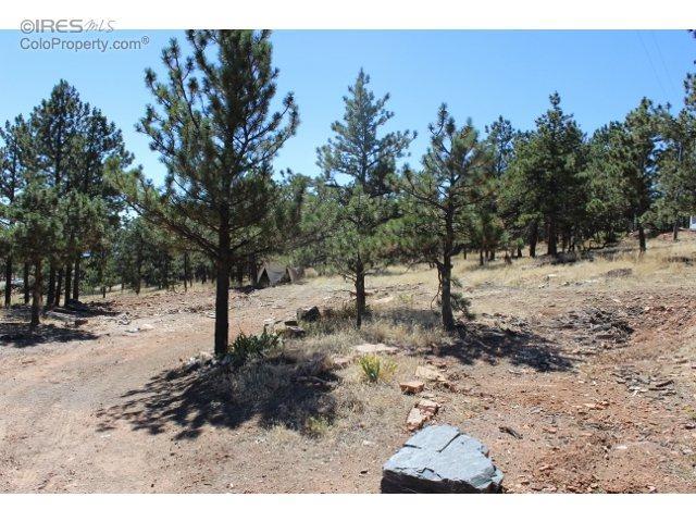 9500 Prairie Way, Loveland, CO 80537 (#802395) :: The Peak Properties Group