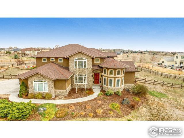 3016 Sunflower Ct, Mead, CO 80542 (MLS #814738) :: 8z Real Estate