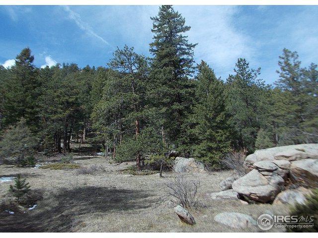 0 Cedar Dr, Lyons, CO 80540 (MLS #816300) :: Wheelhouse Realty