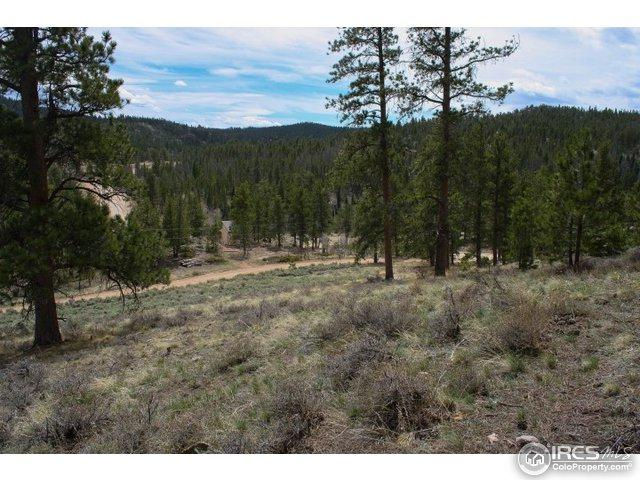 34 Beartrap Rd, Red Feather Lakes, CO 80545 (MLS #817171) :: 8z Real Estate
