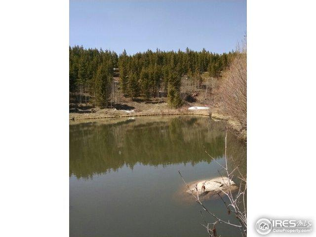 198 Pensacola Ct, Red Feather Lakes, CO 80545 (MLS #817913) :: 8z Real Estate