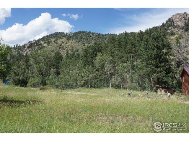 0 Streamside Dr, Glen Haven, CO 80532 (MLS #818289) :: 8z Real Estate