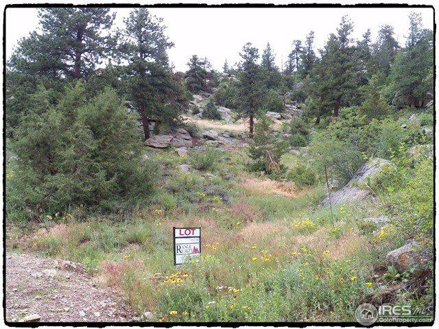 0 Pine Tree Dr, Estes Park, CO 80517 (MLS #819301) :: 8z Real Estate