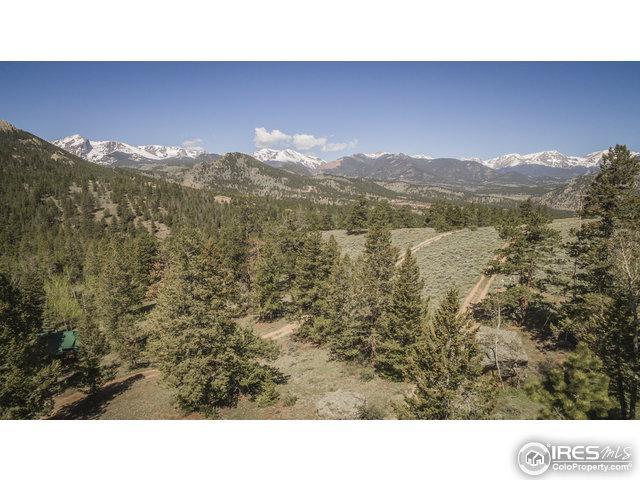 3413 Eaglecliff Cir Dr, Estes Park, CO 80517 (MLS #819529) :: Hub Real Estate