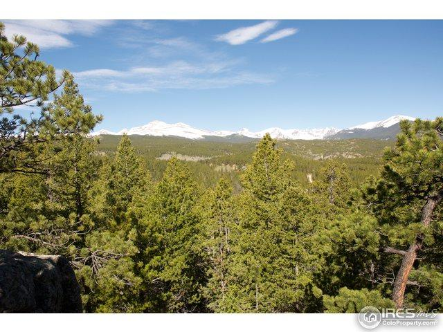 0 Pine Cone Cir, Ward, CO 80481 (MLS #819762) :: 8z Real Estate
