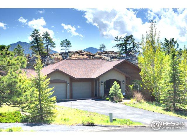 2110 Ute Ct, Estes Park, CO 80517 (MLS #820777) :: 8z Real Estate