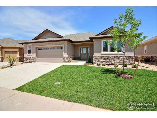 8209 Surrey St, Greeley, CO 80634 (MLS #821680) :: 8z Real Estate