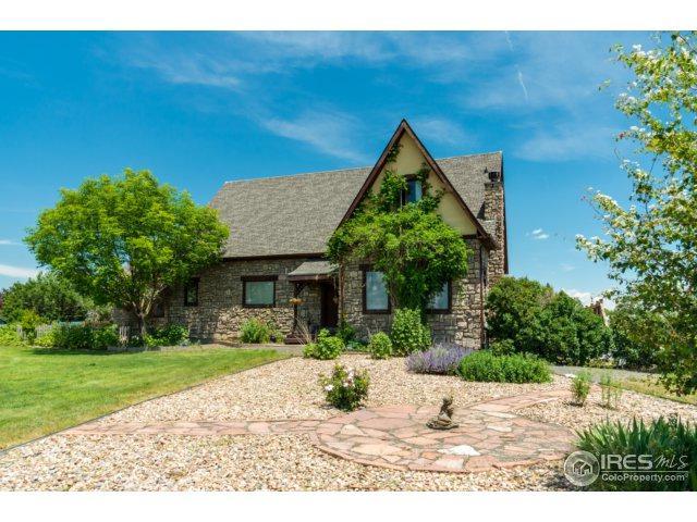 15670 Dallas St, Brighton, CO 80602 (MLS #822822) :: 8z Real Estate