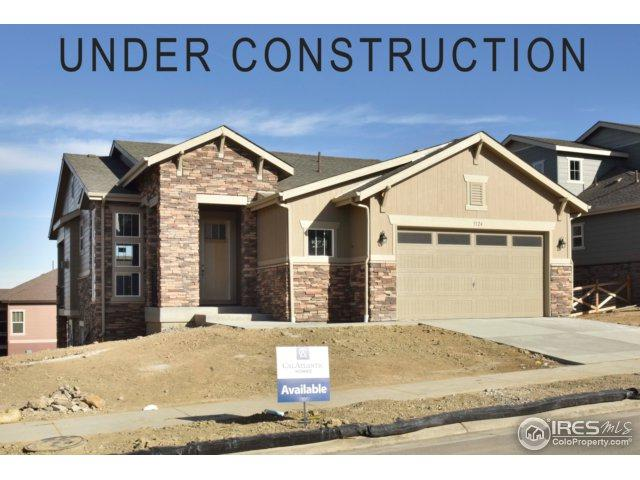 5124 W 109th Cir, Westminster, CO 80031 (MLS #822863) :: The Daniels Group at Remax Alliance