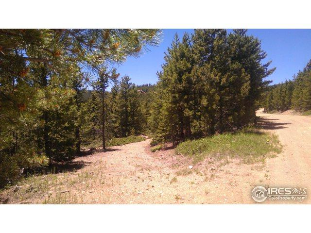 125 Penobscot Ct, Red Feather Lakes, CO 80545 (MLS #823292) :: Kittle Real Estate