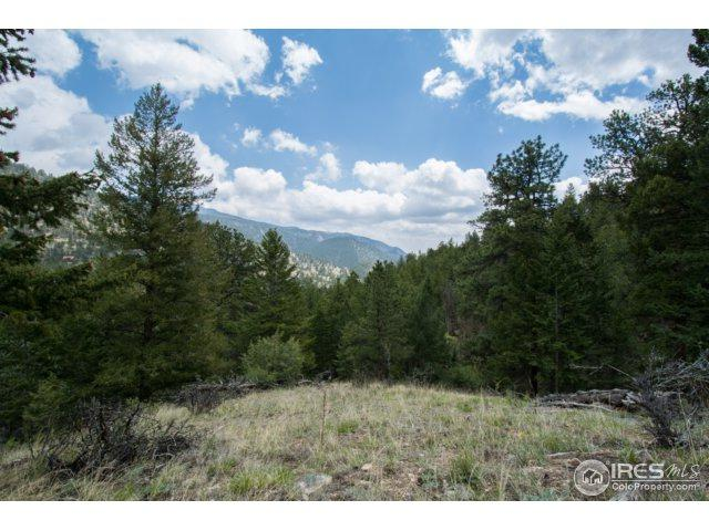 925 Bulwark Ridge Dr, Glen Haven, CO 80532 (MLS #823573) :: 8z Real Estate