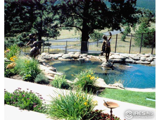 3005 Grey Fox Dr, Estes Park, CO 80517 (MLS #824998) :: 8z Real Estate