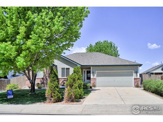 3127 51st Ave, Greeley, CO 80634 (MLS #825104) :: 8z Real Estate