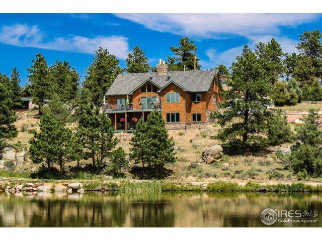 149 Mount Bross Cir, Livermore, CO 80536 (MLS #827502) :: 8z Real Estate