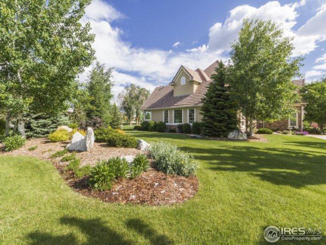 3904 Glenn Eyre Dr, Longmont, CO 80503 (MLS #828165) :: 8z Real Estate