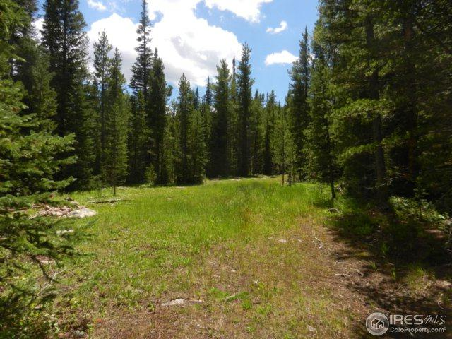 0 Forest Service Road 169, Red Feather Lakes, CO 80545 (MLS #828421) :: Kittle Real Estate