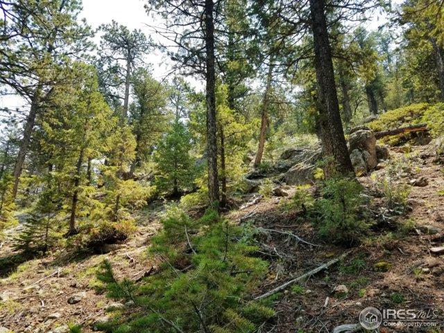 0 Sleepy Hollow Ct, Estes Park, CO 80517 (MLS #828505) :: 8z Real Estate