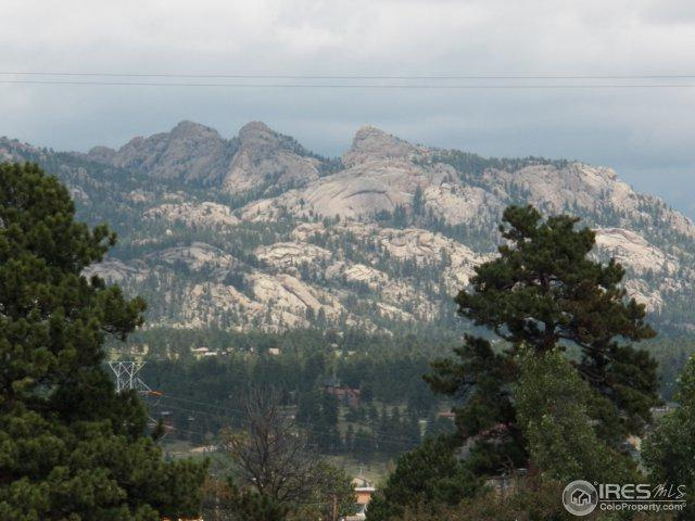 435 Birch Ave, Estes Park, CO 80517 (MLS #828793) :: 8z Real Estate