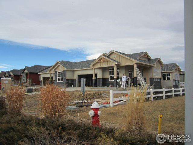 2432 Steppe Dr, Longmont, CO 80504 (MLS #828876) :: Tracy's Team