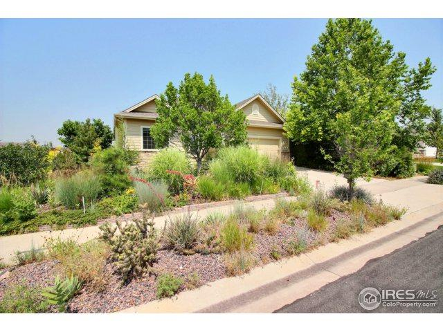 6219 W 15th St, Greeley, CO 80634 (MLS #828977) :: 8z Real Estate