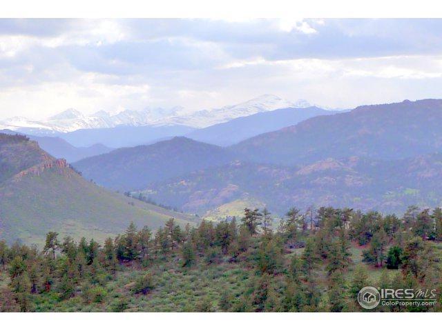 5 Blue Mountain Trl, Lyons, CO 80540 (MLS #829747) :: 8z Real Estate