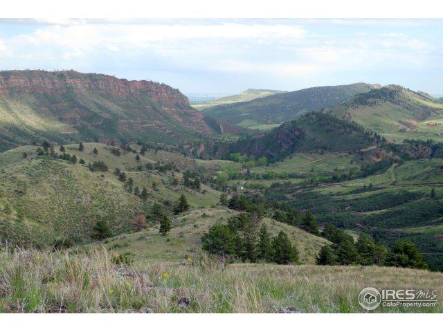 4 Blue Mountain Trl, Lyons, CO 80540 (MLS #830916) :: 8z Real Estate