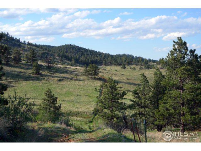 19 Dry Creek Dr, Lyons, CO 80540 (MLS #830923) :: 8z Real Estate