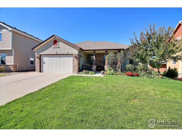 1405 63rd Ave Ct, Greeley, CO 80634 (MLS #832921) :: 8z Real Estate