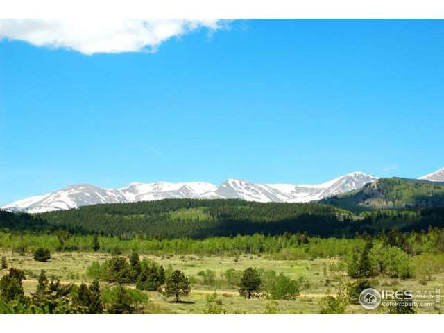19 Bald Mountain Rd A, Central City, CO 80427 (MLS #833741) :: 8z Real Estate
