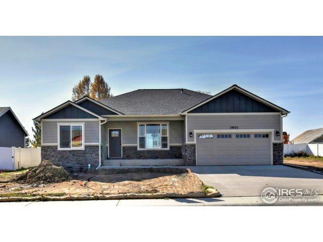 3901 Mount Flora St, Wellington, CO 80549 (MLS #834622) :: Kittle Real Estate
