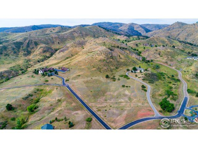 3033 Suri Trl, Bellvue, CO 80512 (MLS #835000) :: Downtown Real Estate Partners