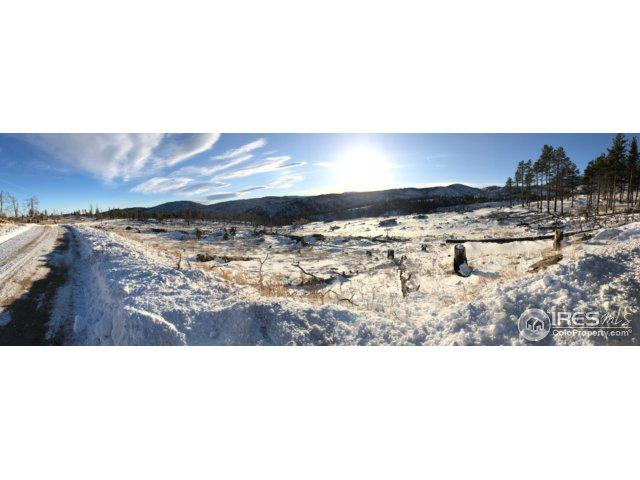 0 Davis Ranch Rd, Bellvue, CO 80512 (MLS #839172) :: Downtown Real Estate Partners