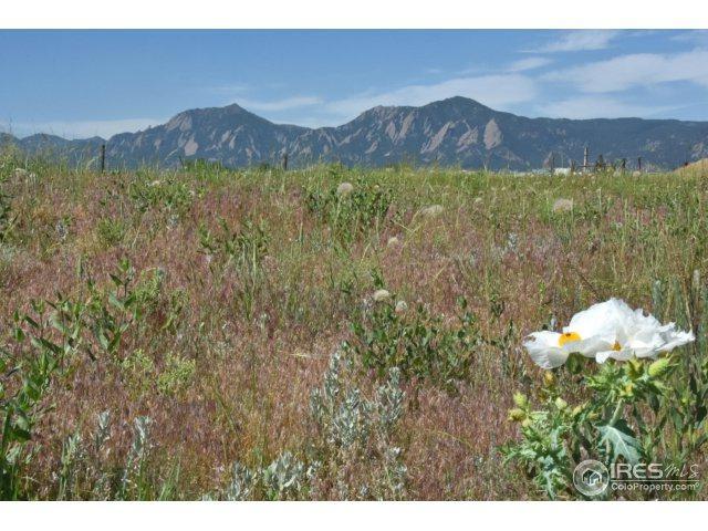 5864 Rustic Knolls Dr, Boulder, CO 80301 (MLS #839663) :: 8z Real Estate