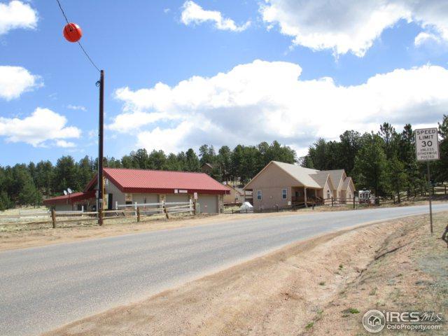 96 Westpoint Cir, Florissant, CO 80816 (#843894) :: The Peak Properties Group