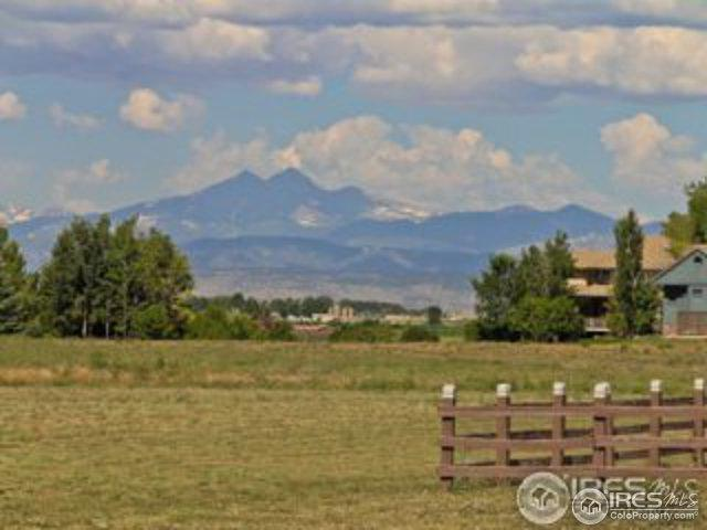 3928 Vale View Ln, Mead, CO 80542 (#846518) :: The Peak Properties Group