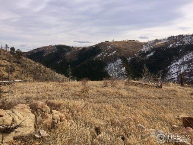 560 Emerson Gulch Rd, Boulder, CO 80302 (MLS #847192) :: Downtown Real Estate Partners