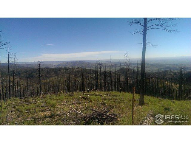 Whale Rock Rd, Bellvue, CO 80512 (MLS #847545) :: 8z Real Estate