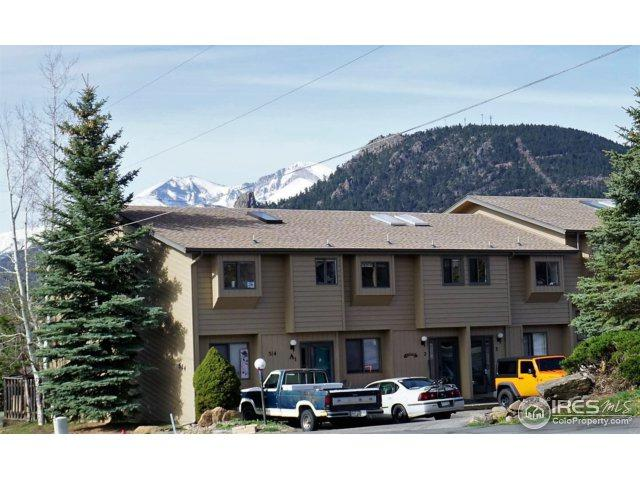 514 Grand Estates Dr A3, Estes Park, CO 80517 (MLS #848817) :: Colorado Home Finder Realty
