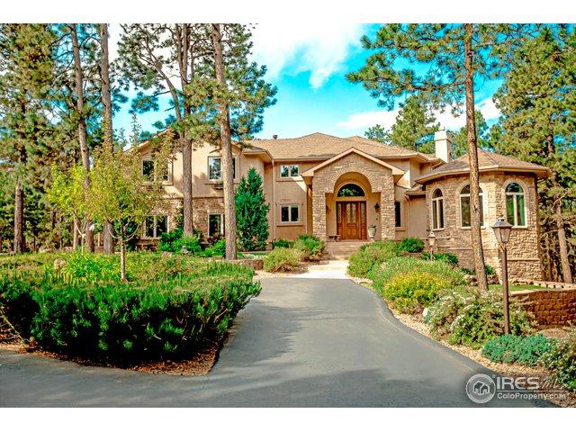 17507 Colonial Park Dr, Monument, CO 80132 (MLS #849445) :: Kittle Real Estate