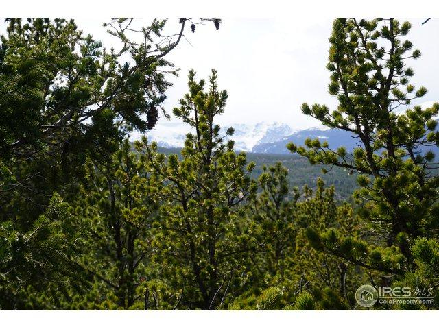 0 Pine Cone Cir, Ward, CO 80481 (MLS #849609) :: 8z Real Estate