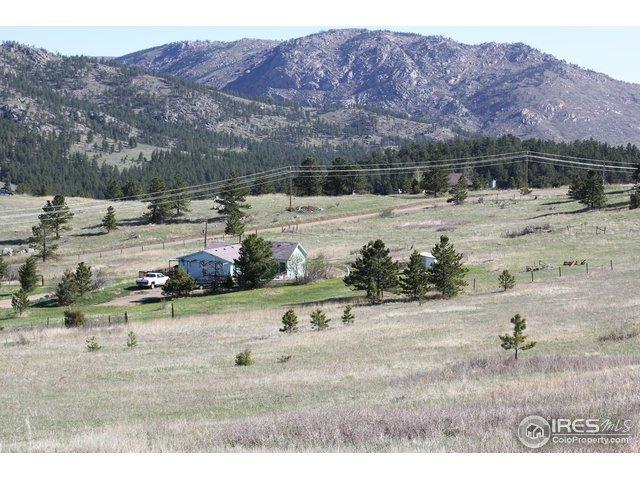 1780 Palisade Mountain Dr, Drake, CO 80515 (MLS #850089) :: 8z Real Estate