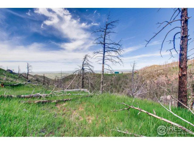 1500 Whale Rock Rd, Bellvue, CO 80512 (MLS #850156) :: 8z Real Estate