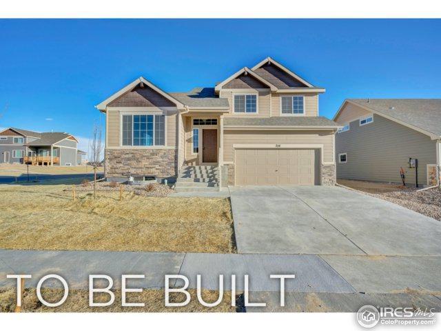 1068 Mt. Oxford Ave, Severance, CO 80550 (MLS #850183) :: Kittle Real Estate