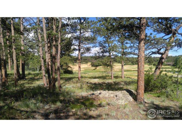 1410 Fox Acres Dr, Red Feather Lakes, CO 80545 (MLS #854023) :: June's Team