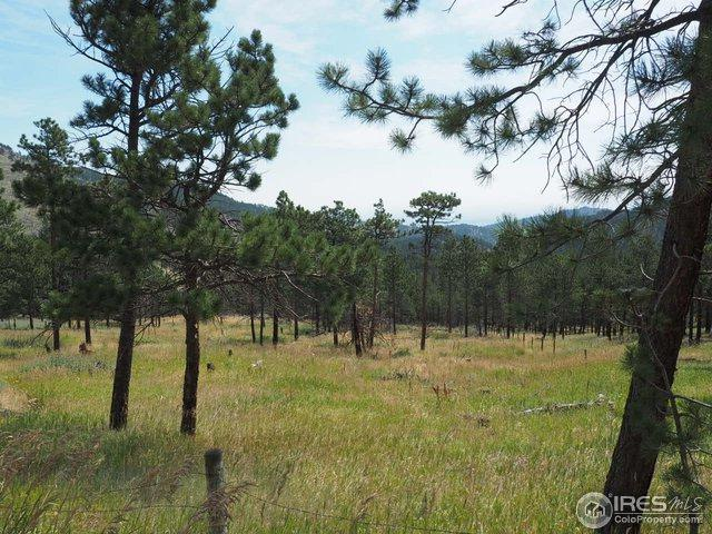 94 County Road 83, Boulder, CO 80302 (#856794) :: The Peak Properties Group